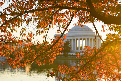 Autumn_JeffersonMemorial