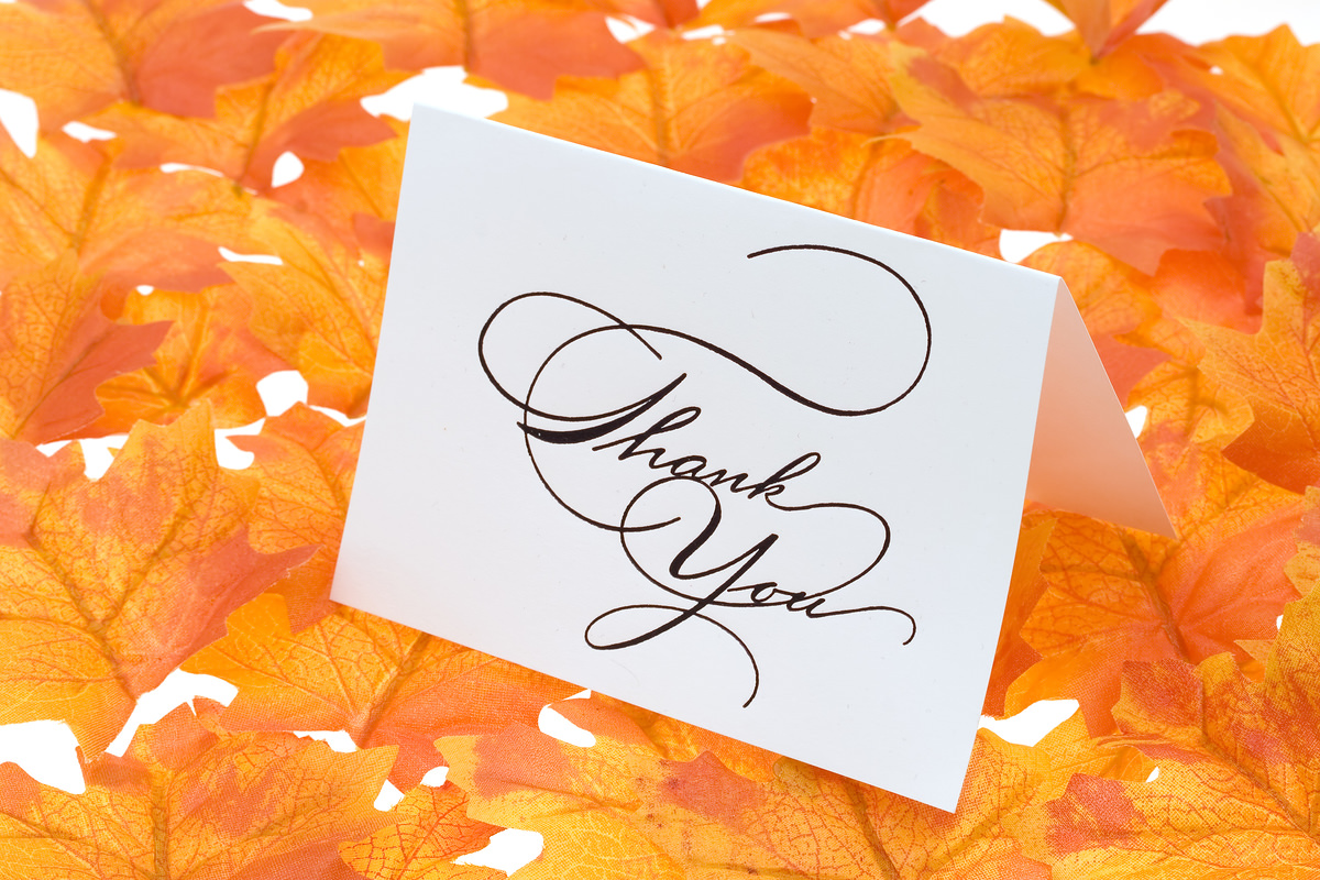 bigstockphoto_Thank_You_Card_With_A_Leaves_B_1850568