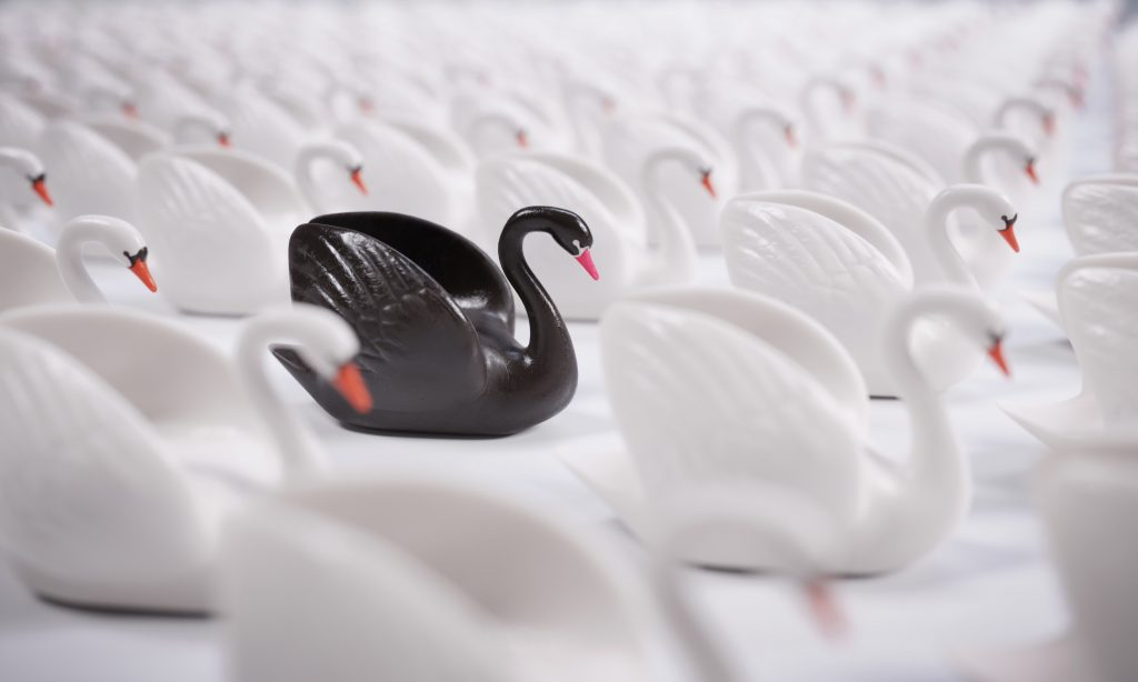 Black Swan. Risk Management Template for Event Planners. Howerton+Wooten Events.